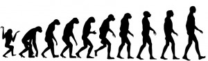 Do the Evolution