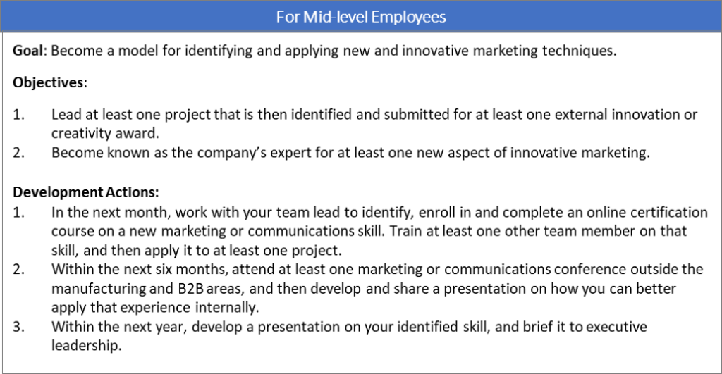 B2B Development Plan for Mid-Level Employees
